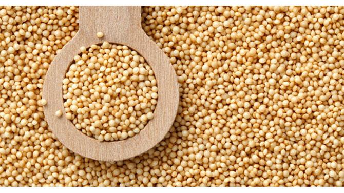 alpen gabonafélék jó fogyás