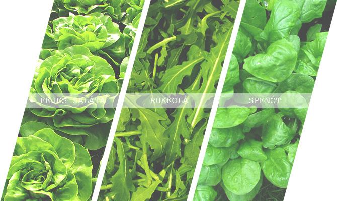 Zöldségszezon – Április