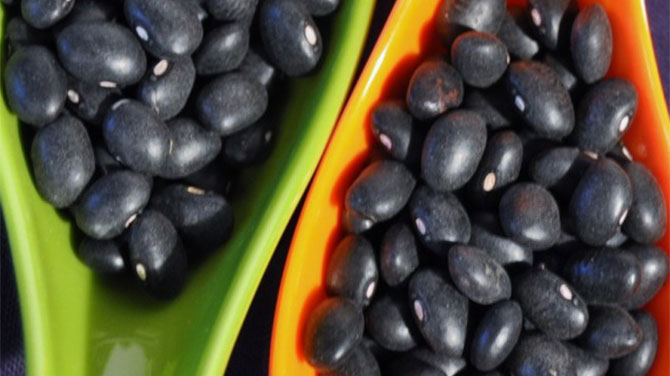 Fekete bab kalória