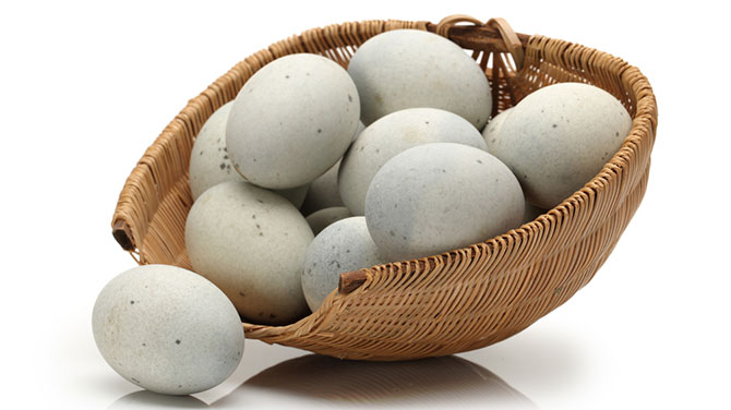 Kacsa fogyás - Mi az ideális kalóriatartalom fogyáshoz?