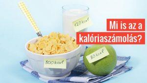 Mi is az a kalóriaszámolás?