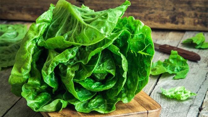 Fejes saláta kalória
