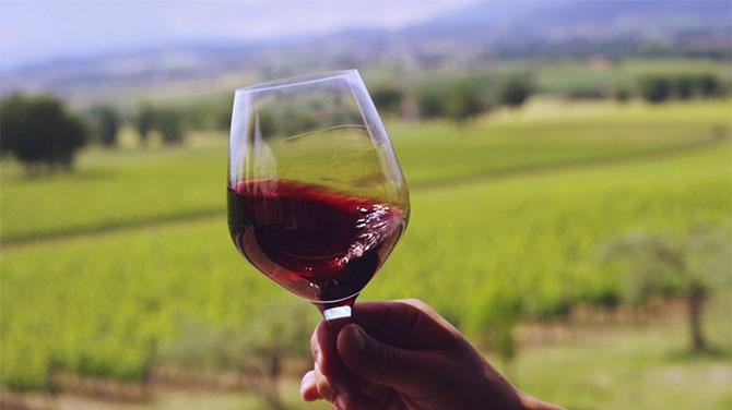Száraz vörösbor kalória- Lehet fogyni száraz vörösborral?